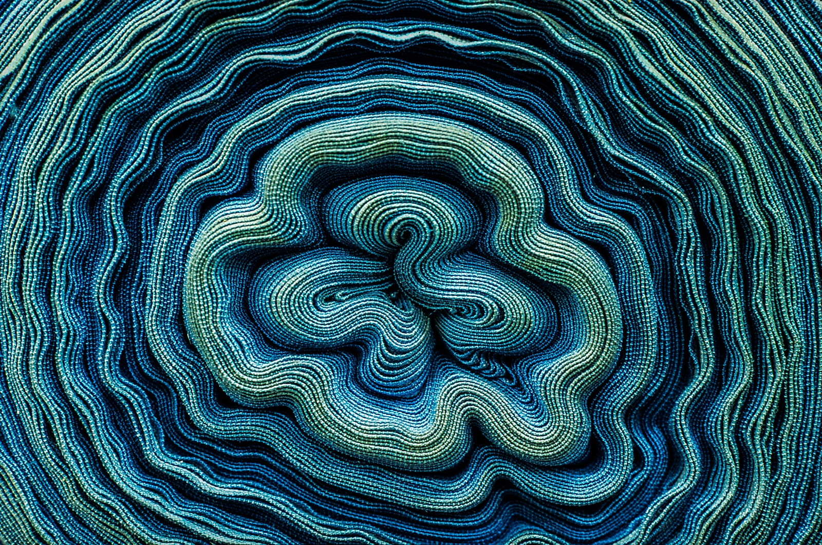 25-Fleur-de-textile